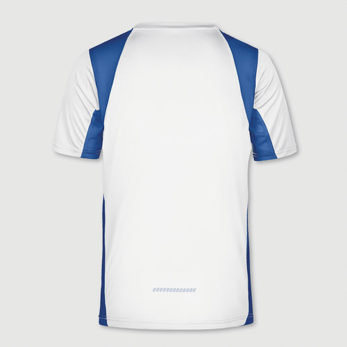 vit / kungsblå